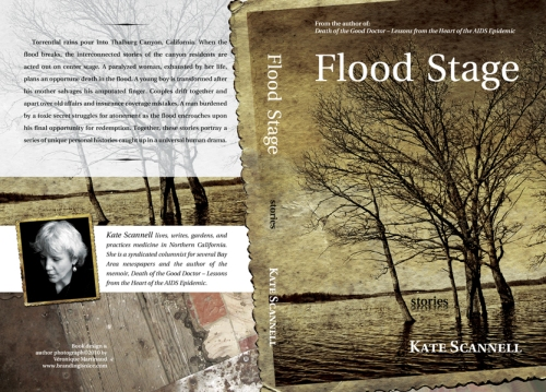 """Book cover """"Flood Stage"""""""